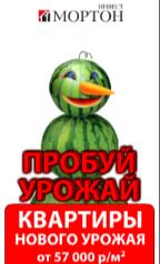 Рекламная компания 2